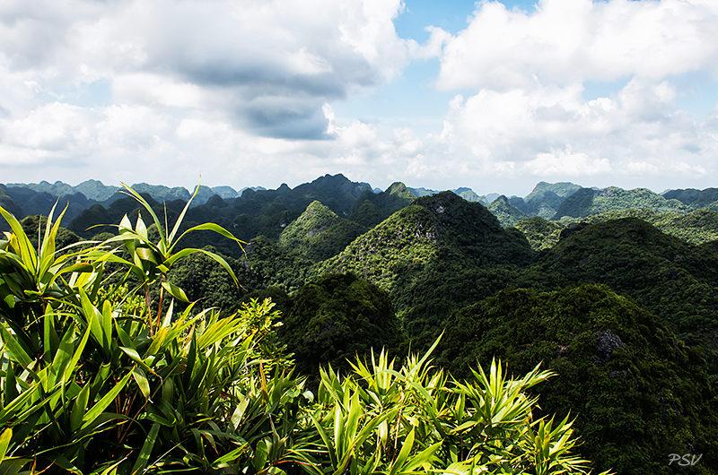 Северный Вьетнам: остров Катба — 2 часть
