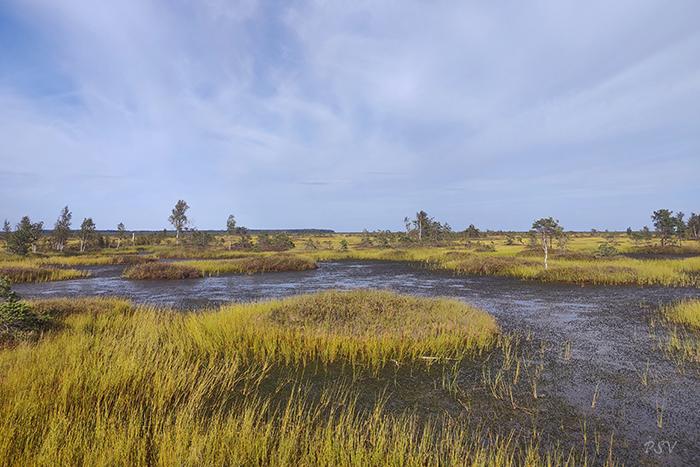 Экологическая тропа «Озеравки-Ельня»