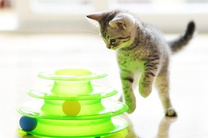 Игрушки для кошек и котят